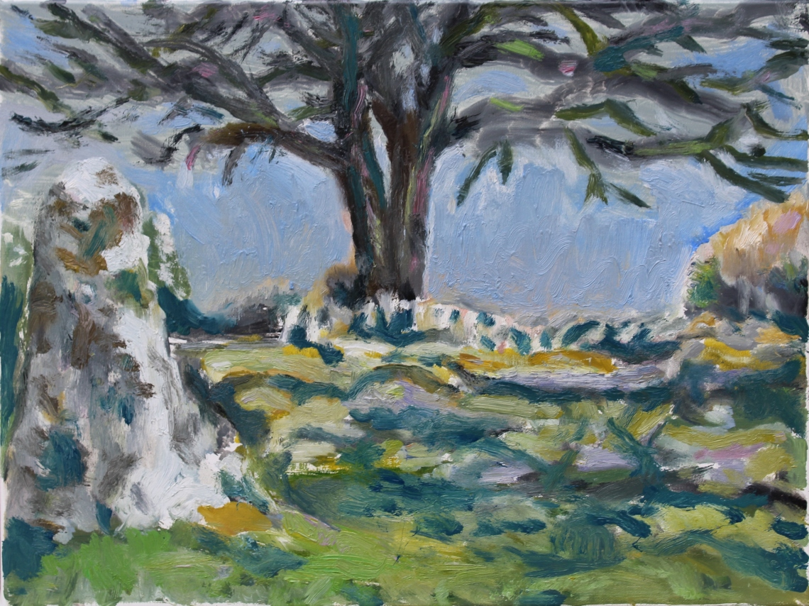 Plein air study of stones and spreading branches