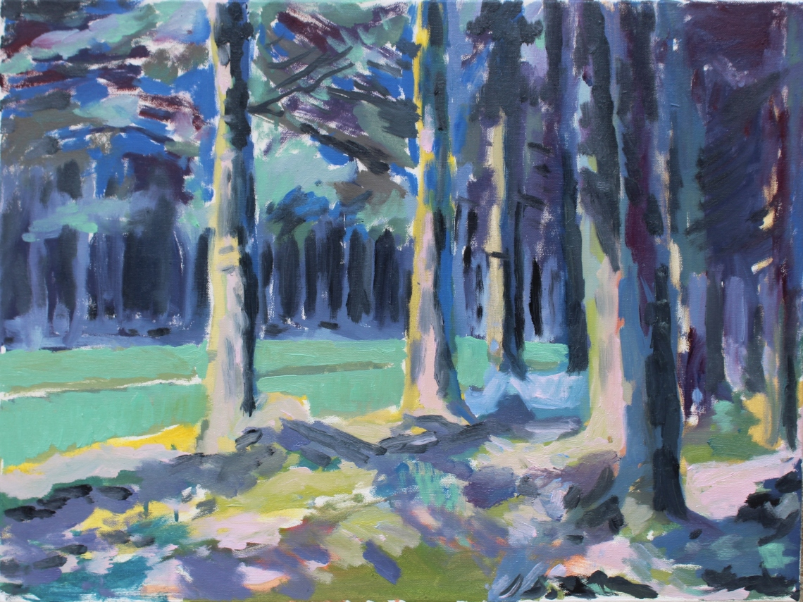 spruce forest a study