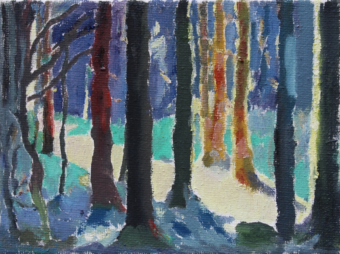 Spruce forest colour