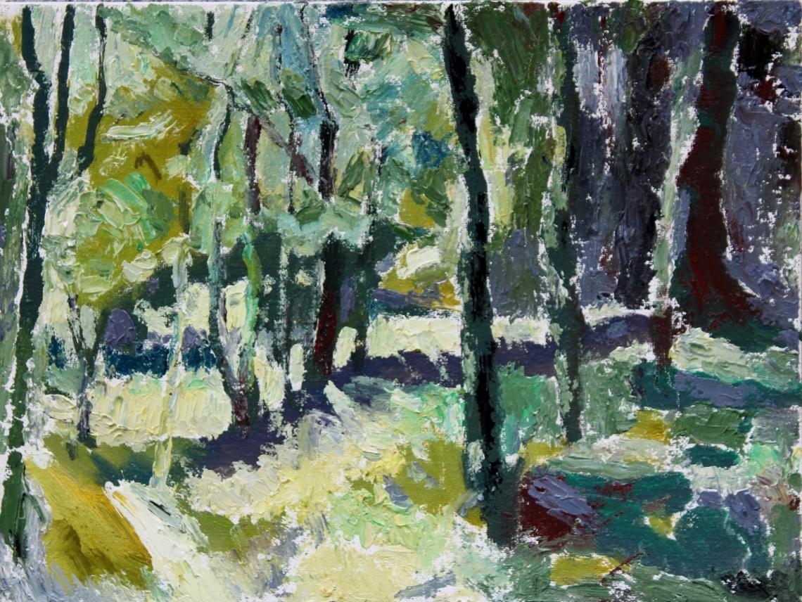 Sunny woodland scene
