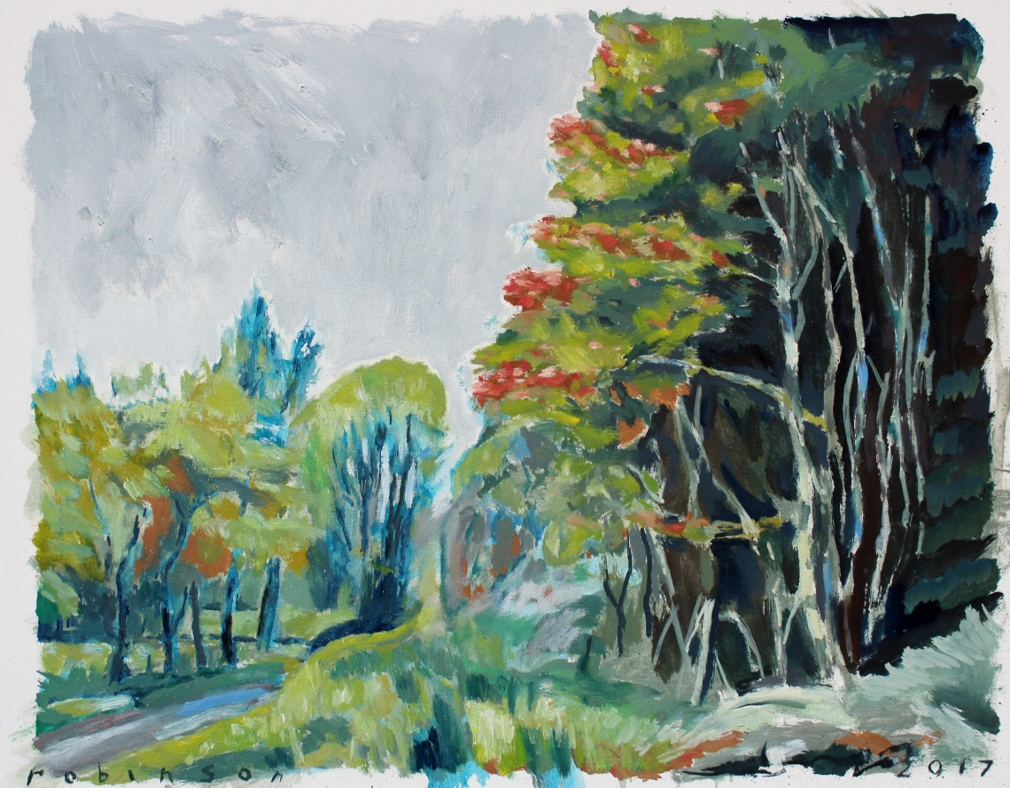 forest drive with Maple