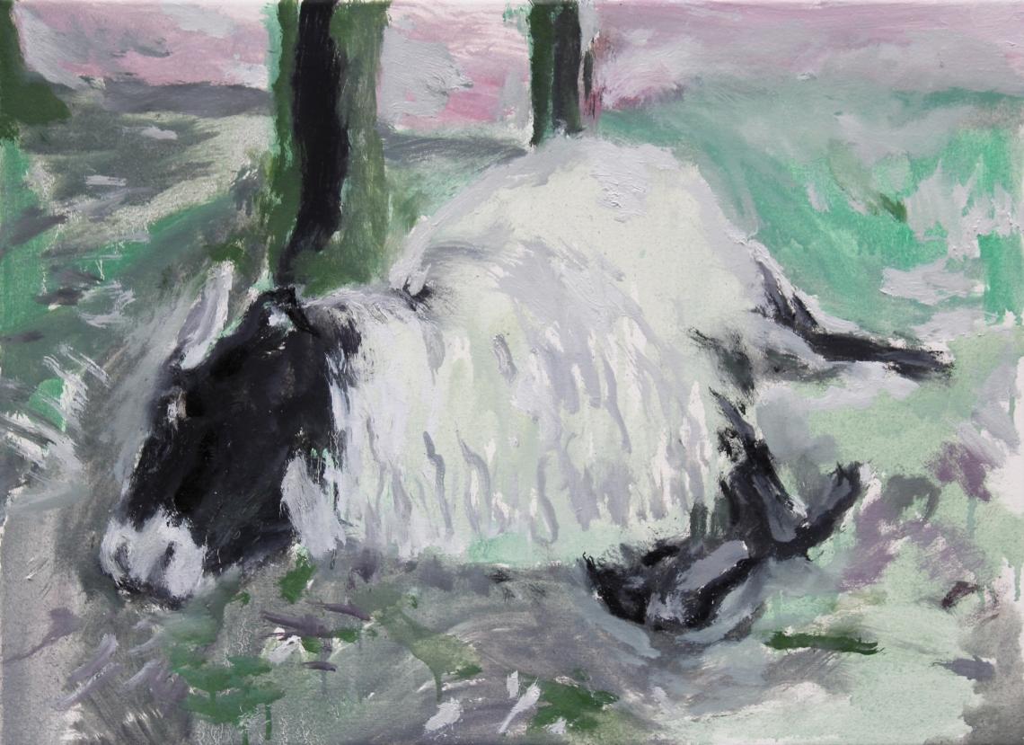 dead ewe updated