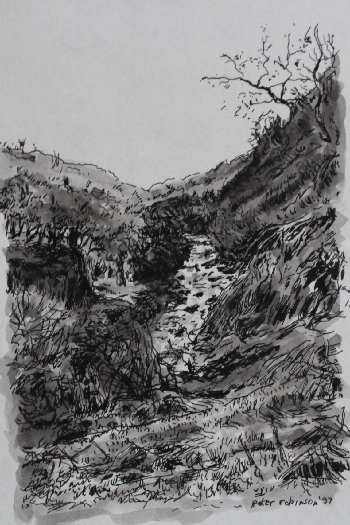 arigna river source