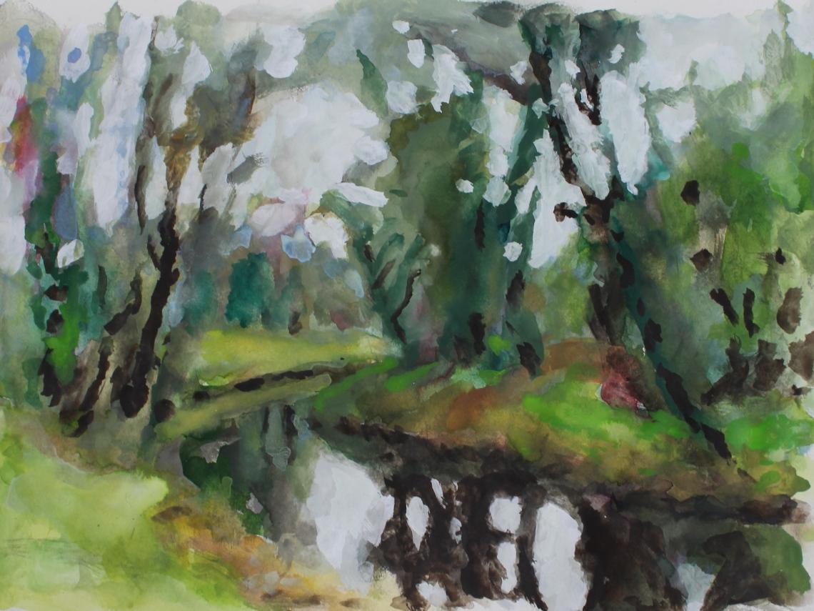 Lough Allen canal view