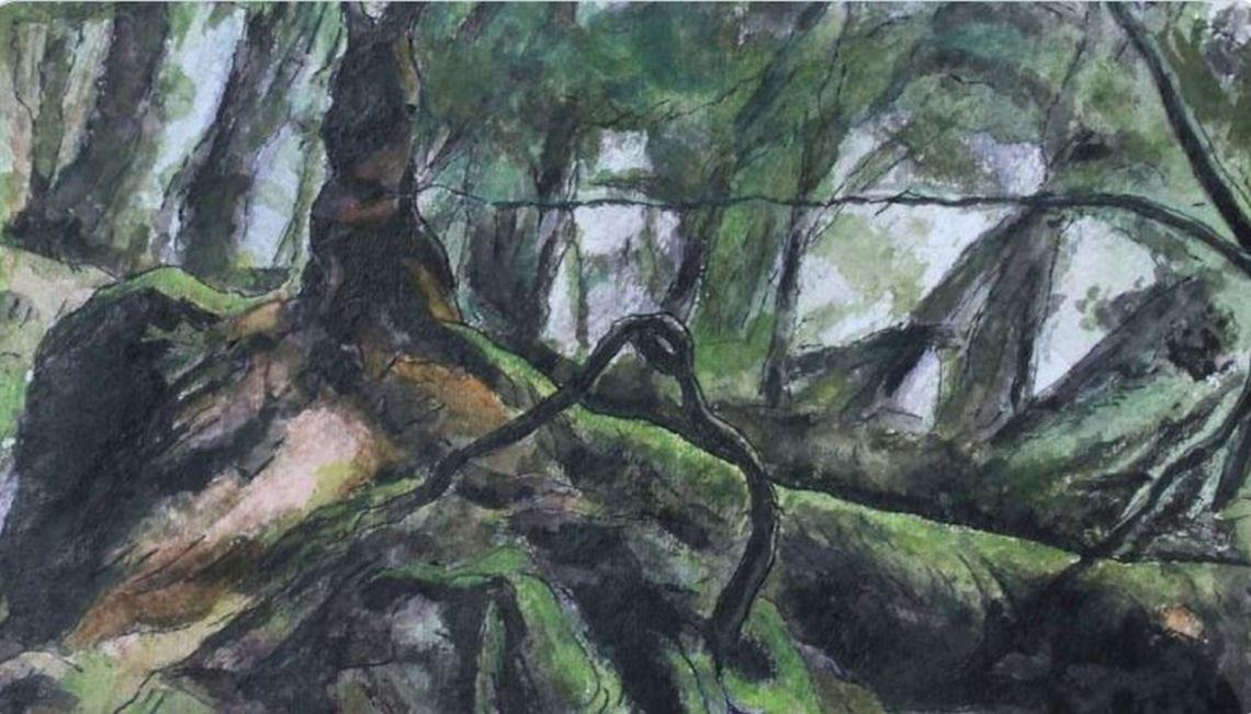 knockranny wood 6 landscape