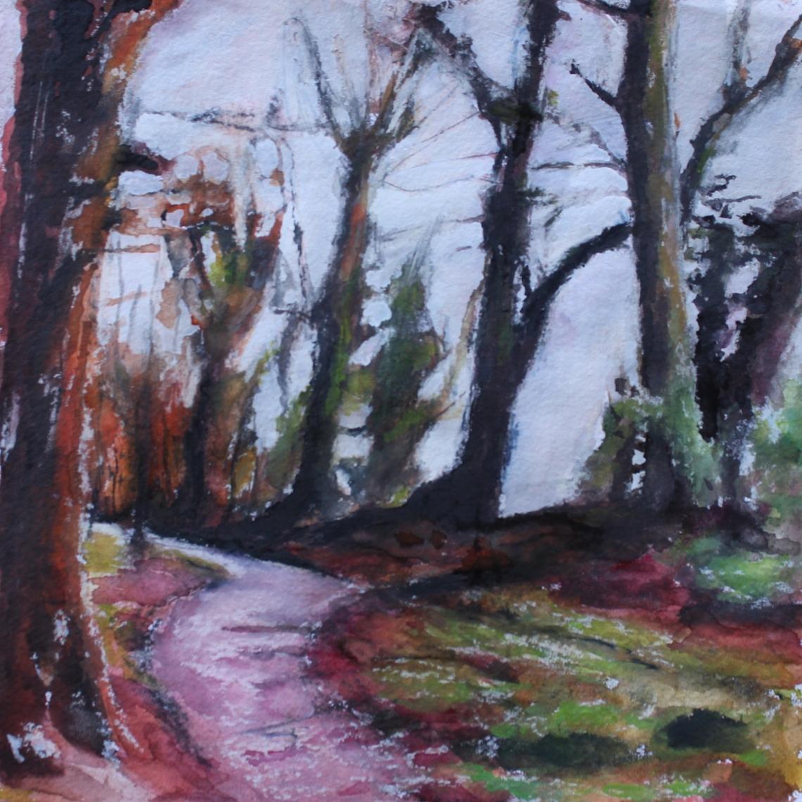 knockranny woods 3