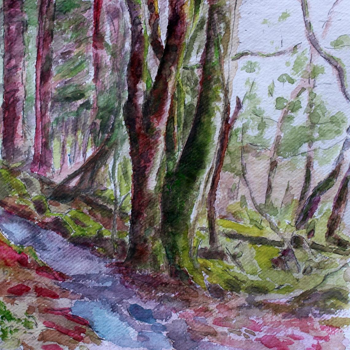 knockranny woods 4 b