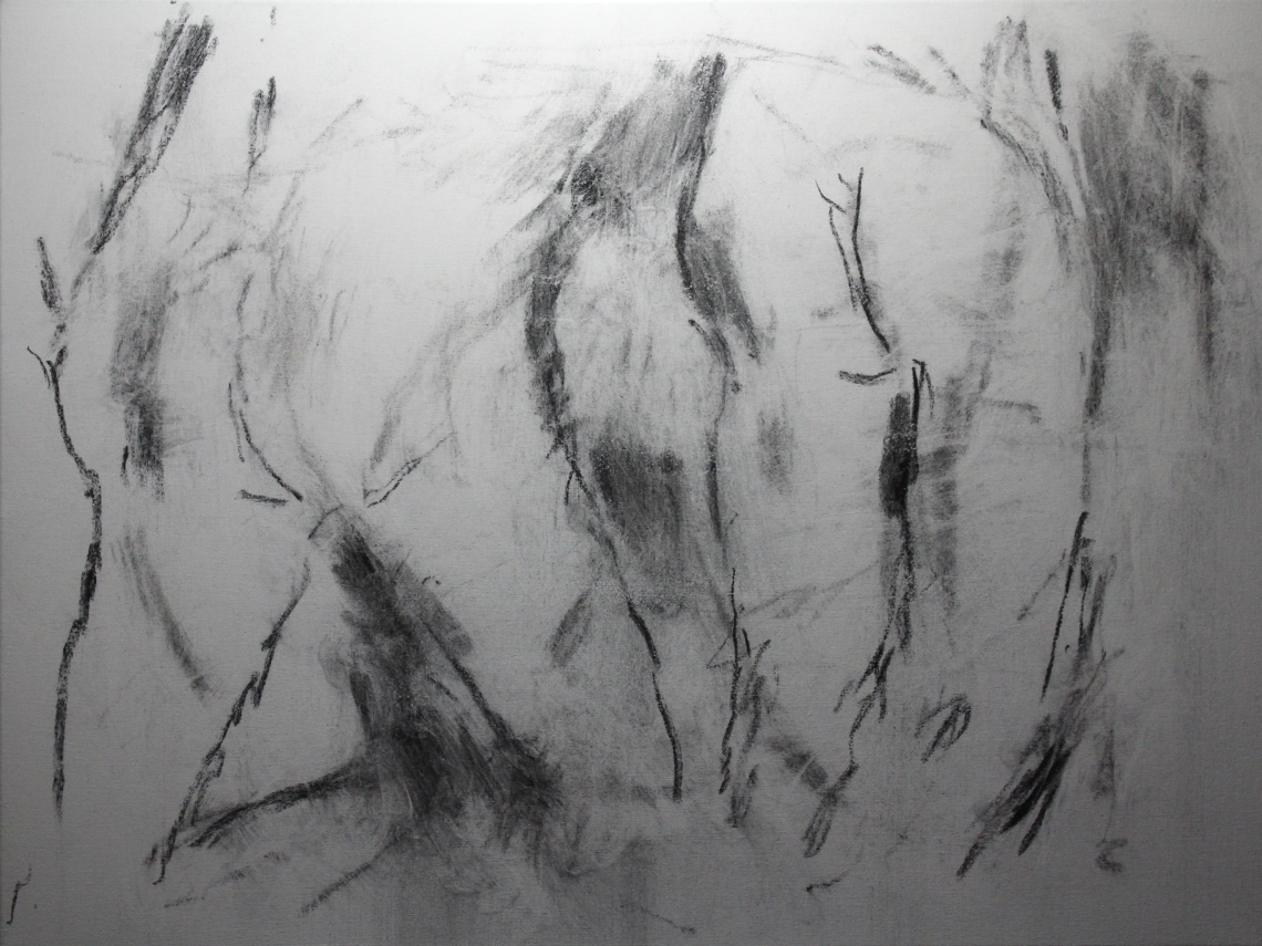 charcoal and feather eraser fixed with acrylic matt varnish